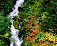 Swift Creek Falls - Autumn Color